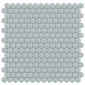 Element Cloud Penny Round Glass Mosaic