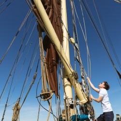 Man setting the sails