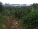 fila-naranjo-costa-rica-4