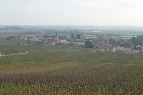 Beautiful Vineyard Views - Burgundy
