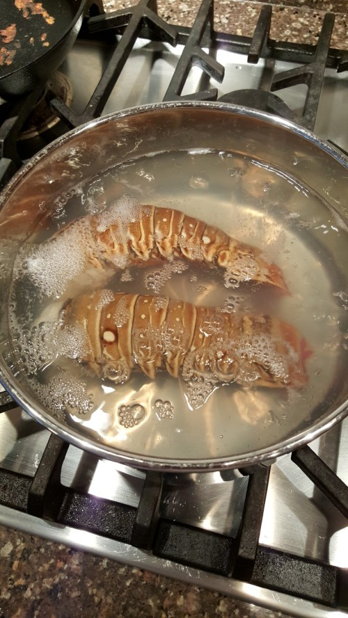 Two Lobster tails boiling away - 1 minute per ounce usually does it for me!