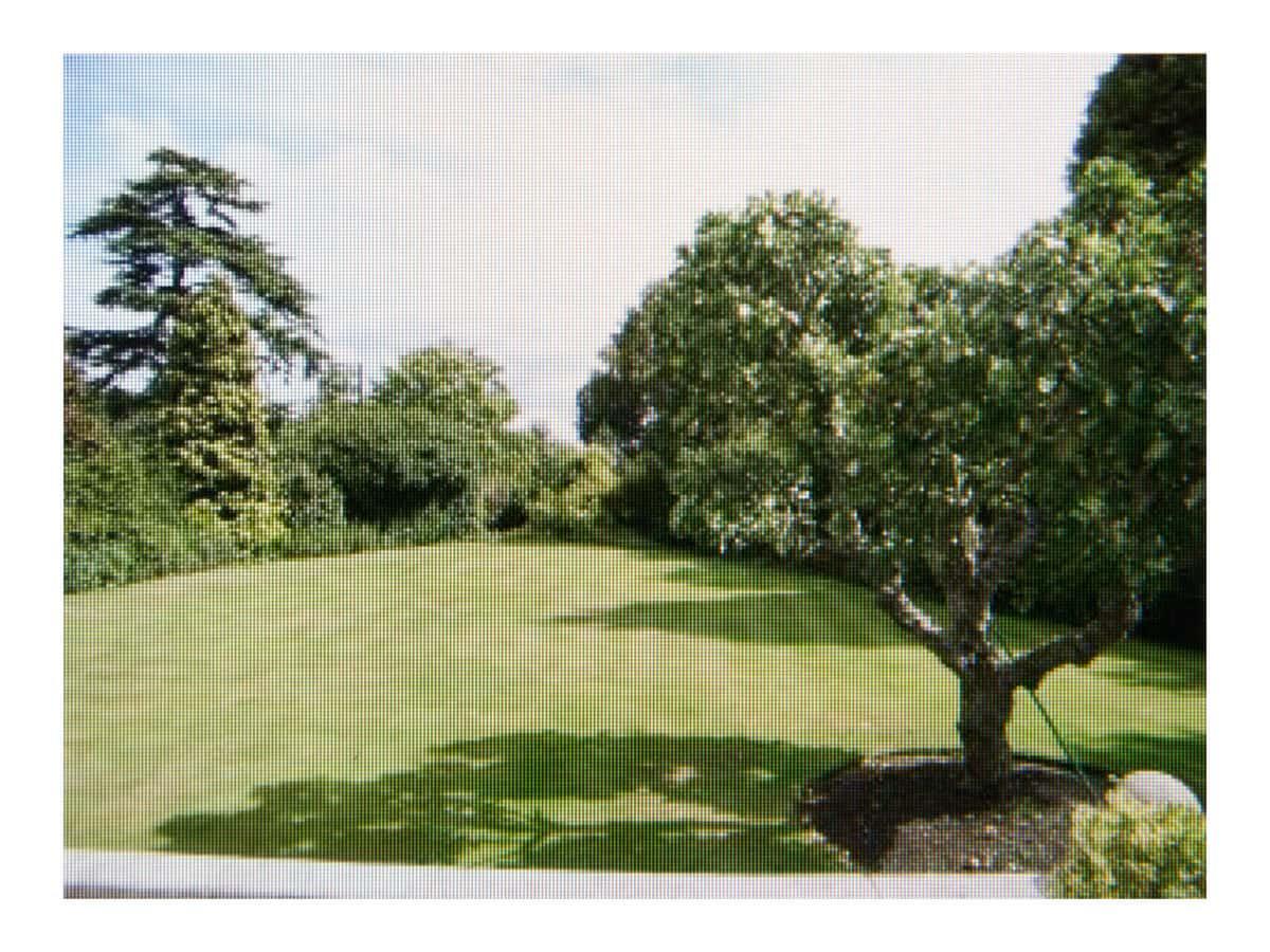 £1,100,000 (Maidenhead, Berkshire), 2009