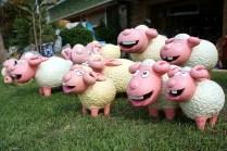 Schafsammlung
