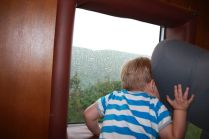 Kuckuck im Zug
