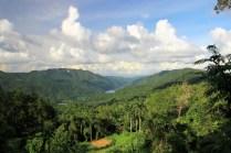 Der Palmenmirador und woher er seinen Namen hat