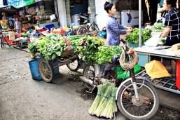 Herb-Bike