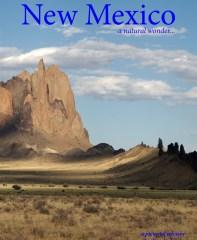 New Mexico, a natural wonder...