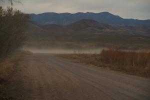 Bosque del Apache #9375