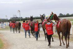timaru-races-0054