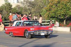 Rock n Hop Car Parade 00288