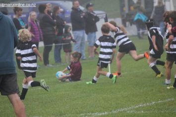 Junior Rugby Kicks Off 00061