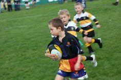 Junior Rugby Kicks Off 00291