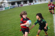 Junior Rugby Kicks Off 00366