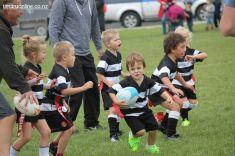 Junior Rugby Kicks Off 00492