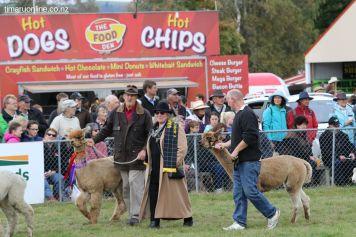 Mackenzie Show Grand Parade 0022