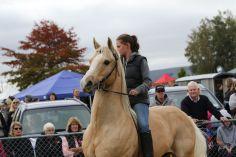 Mackenzie Show Grand Parade 0039