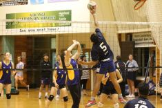 Volleyball Finals 00158