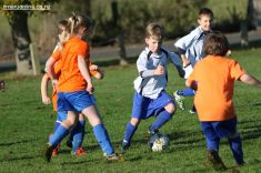 Junior Football 0052