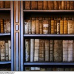 SEOs Are Librarians,The Net is a Library, Our Tools The Card Catalog