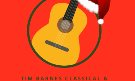 Christmas offer- discounted lessons!