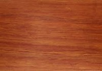 Karri timber - Product of Western Australia - Timber and Rose
