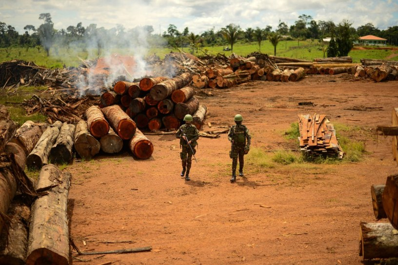 Armed soldiers stand in a log yard during Operation Verde Brazil 2.