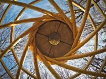 Reciprocal Frame Roof Timber