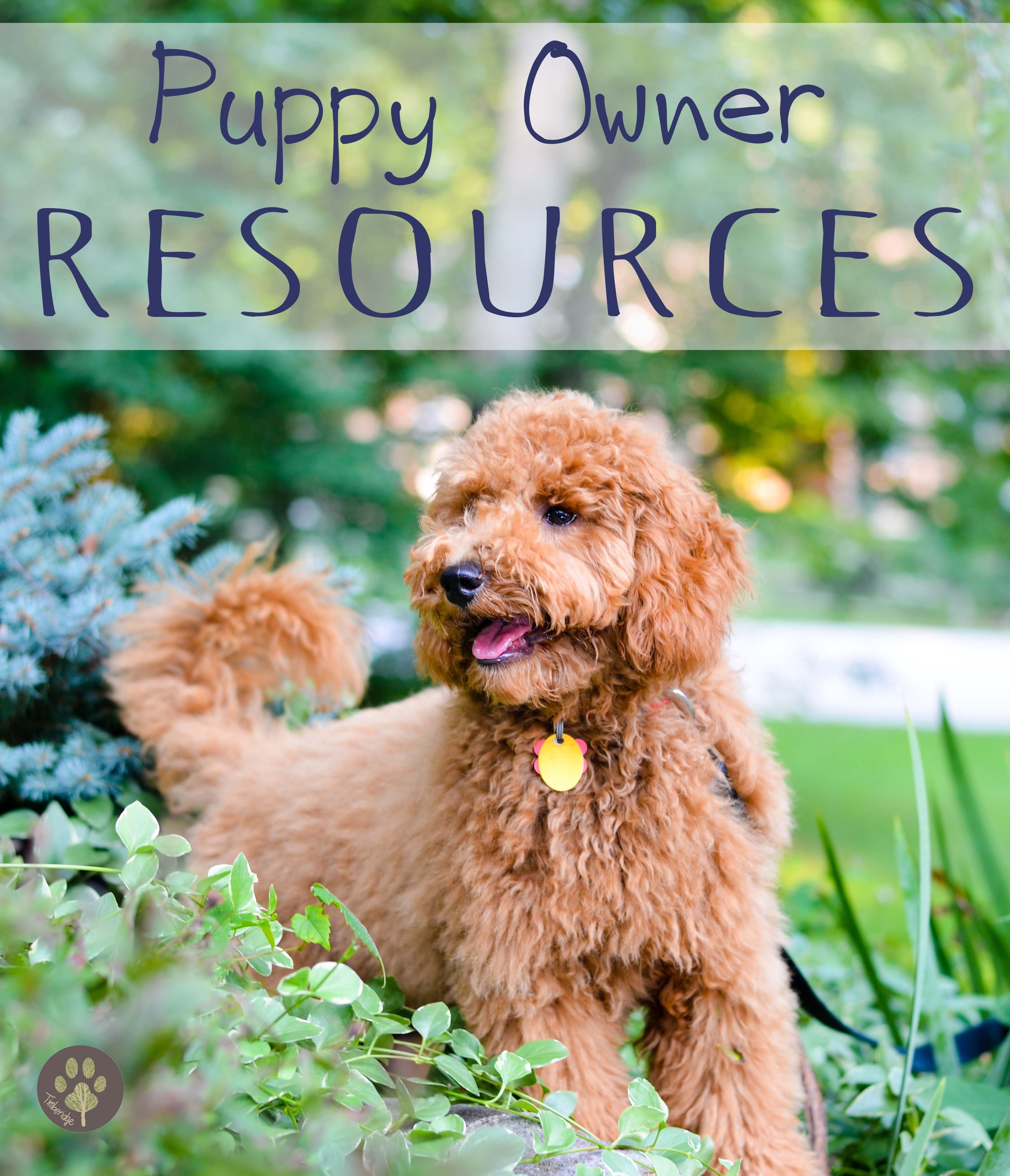 Puppy Owner Resources Timberidge Goldendoodles