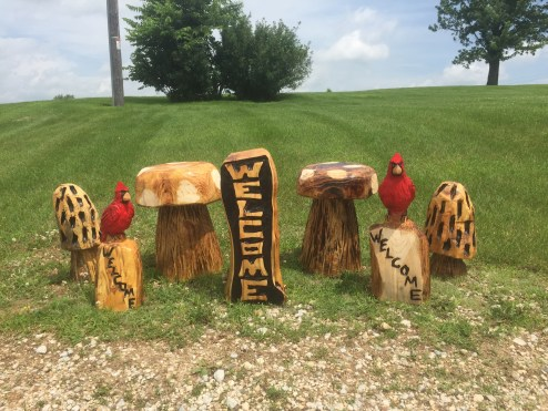 cardinals, toadstools, morel mushrooms, welcome sign
