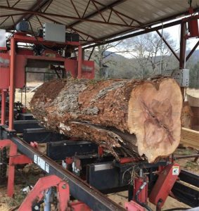 Best Portable Sawmill On The Market