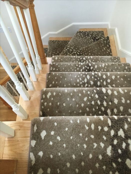 Prestige Mills Deerfield Carpet Lets See Carpet New Design