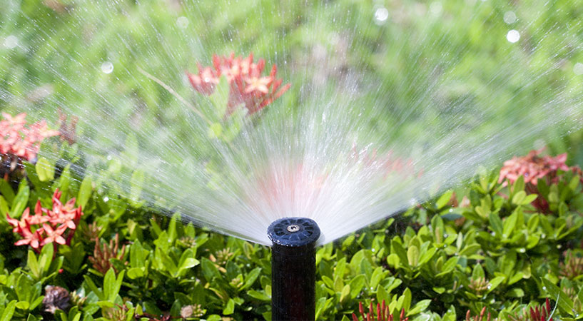 In-Ground Sprinkler Systems go Hand in Hand with Sustainability
