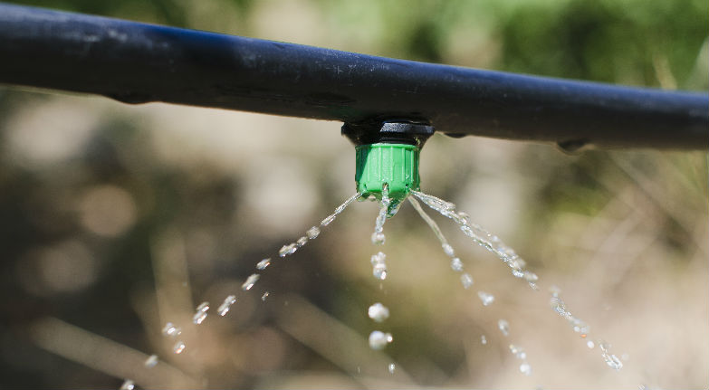 Why Drip Irrigation Systems are Perfect for Garden Beds