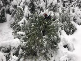 20181201_TT_Xmas_Tree_Run_63