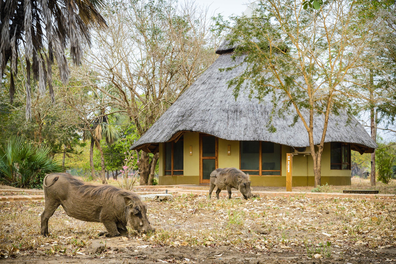 sofala safari sofa beds fast delivery uk montebelo gorongosa lodge and mozambique timbuktu