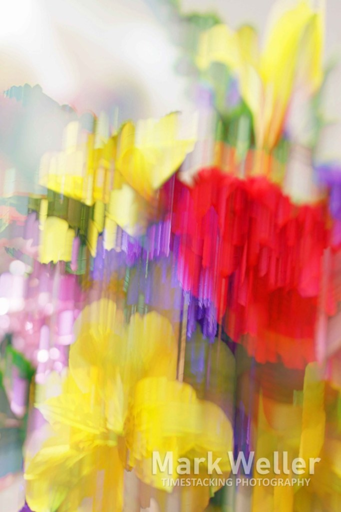 Timestack photography of abstract flowers yellow red purple