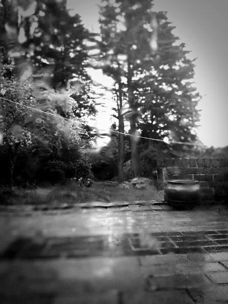 Day 107 Ahh the typical Bank Holiday weekend in England - rain!