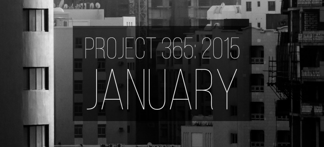 Project 365: January 2015