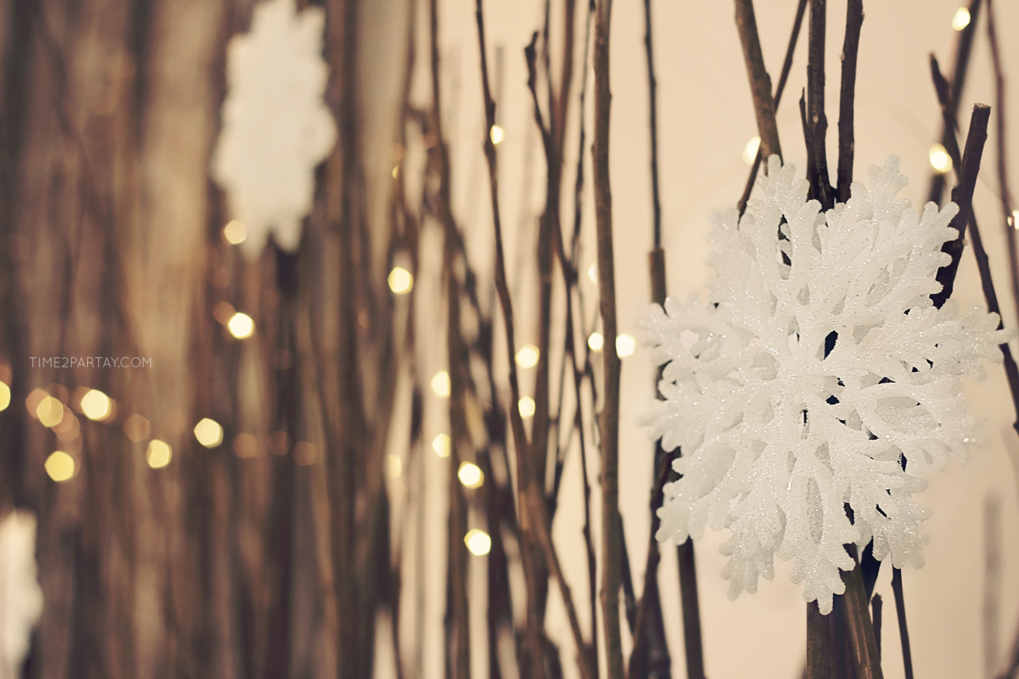 A Rustic Winter Welcome Baby Party  Time2Partaycom