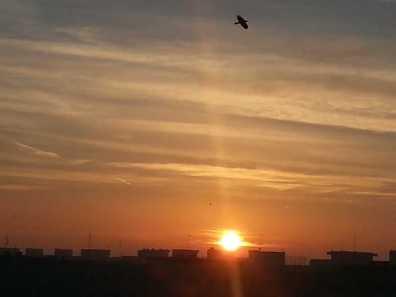 Winter-sunrise-03