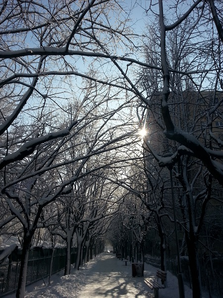 Winter tunel-02
