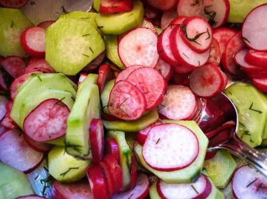 Spring Cucumber Radish Salad