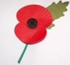 remember time travellers on poppy day