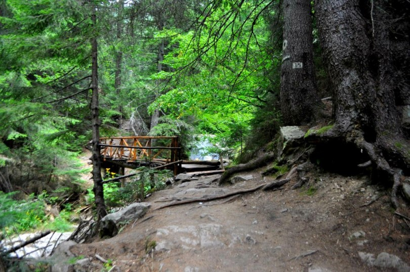 Дървено мостче по екопътеката