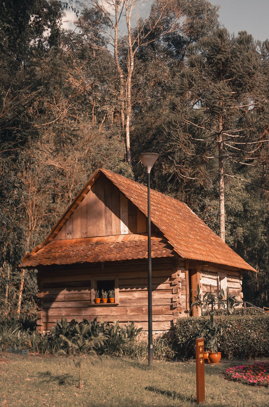 brown cabin besides green trees