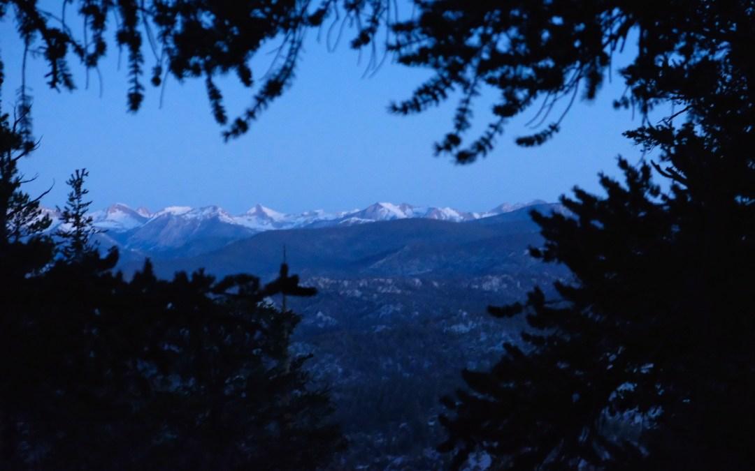 Day 49: Sierra Moonlight