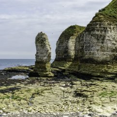 Caves Arches Stacks And Stumps Diagram Mercedes Sprinter Radio Wiring Formation Of A Sea Stack