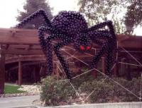 Spiders and Webs for Halloween | Time for the Holidays