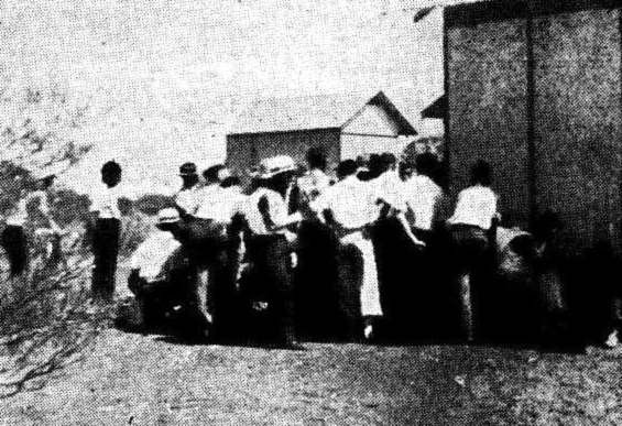 beer strike reedy daily news perth feb 4 1936 corrected