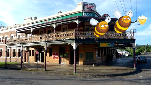 bank-hotel-dungog-nsw-bees